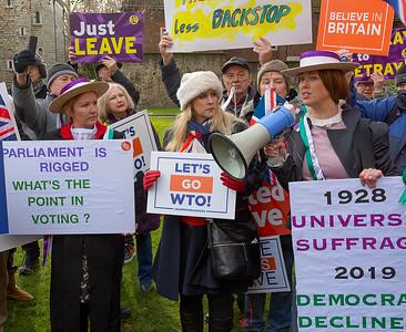 Suffragettes for Brexit