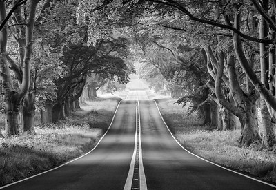 On a road to nowhere B&W