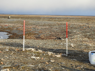 Measurements area 2, September 2019.