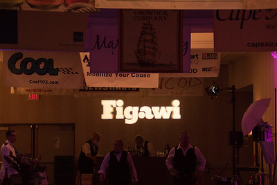 Figawi-Ball-1-2016-08316
