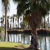 3 -  Surroundings at JW Marriott Resort & Spa in Palm Desert, CA