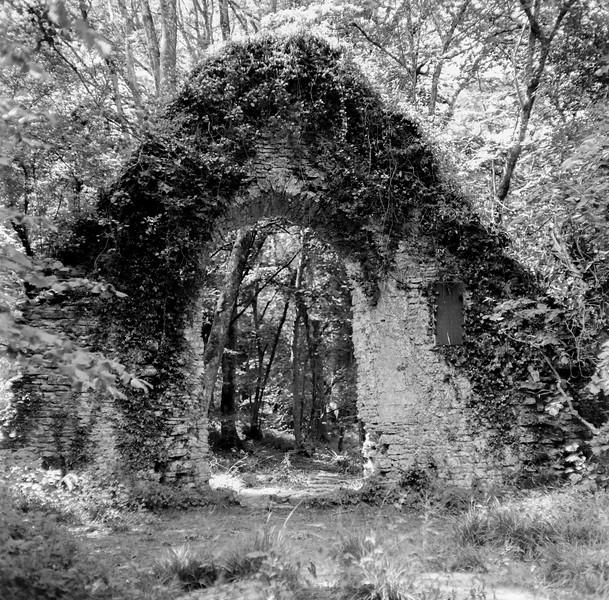 st. lukes chapel, ashley chase, dorset