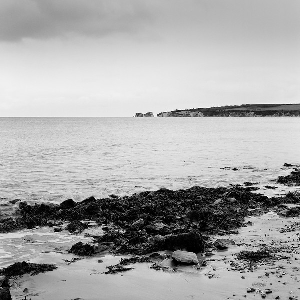 beach & old harry rocks, studland, dorset