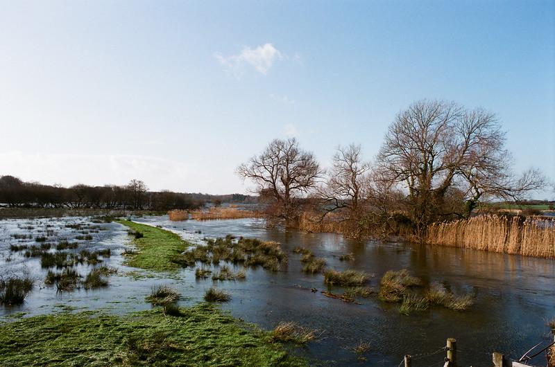 Floods, Wareham, Dorset
