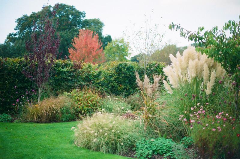 holme gardens, wareham, dorset