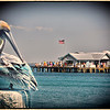 PELICAN DREAMING OF FISH PIER