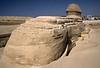 SphinxButt0176PG34