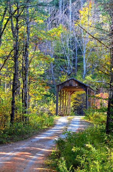 VermontBrdge0078x