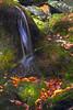 Fall&Rocks0190