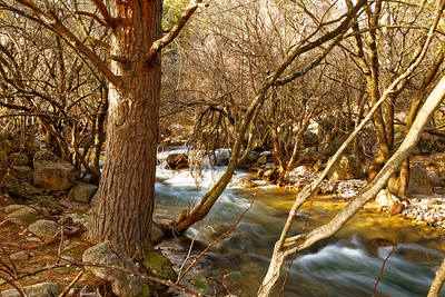 Mystic river - II