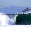 Dolphins_RJ's 2013-4-17_1314.JPG