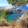 California_Carmel_Point Lobos_2013-09-16_8871.JPG