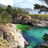 California_Carmel_Point Lobos_2014-06-0492.JPG