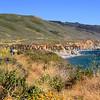 California_Big Sur_Andrew Molera Beach_2014-06-17_0572.JPG