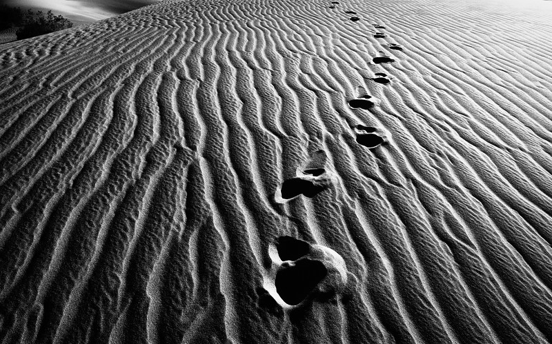 Steps of Time - bw