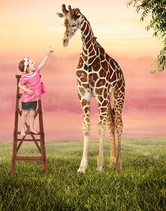 Giraffe Ladder Digital Background