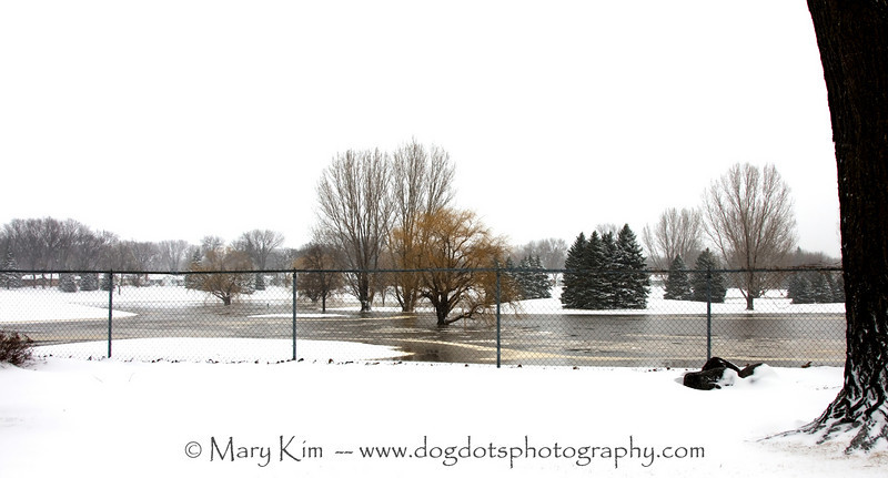 Fargo Flood 2009