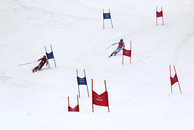 Telemark World Cup