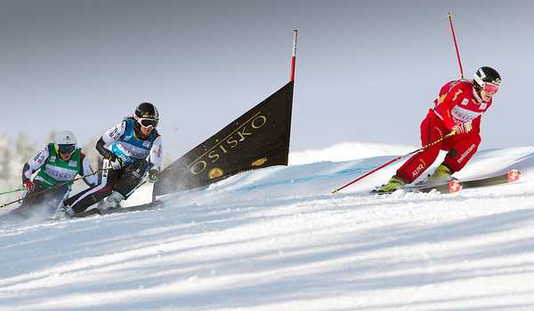 Best-of Ski Cross 2012-13
