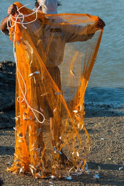 Net fishing 07010026 copy test_01