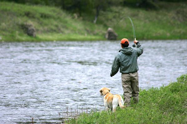 Fishing Dog Photos - Jim Klug Photos