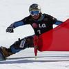 Snowboard WC<br /> Valmalenco PGS<br /> Quali Meinhard Erlacher ITA