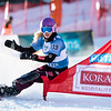 FIS Snowboard World Cup - Bad Gastein AUT - PSL