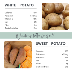 Copy of Nutrition & Fitness Prompt Pack 1