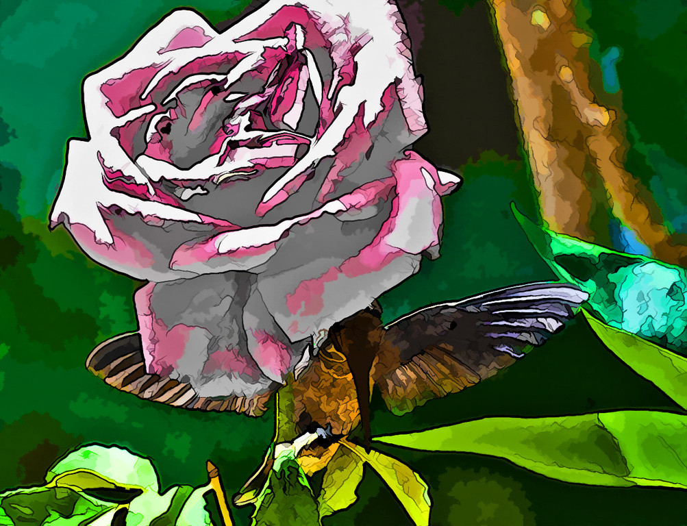 Peace Rose with Helpful Wings