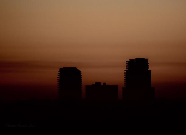 Tampa Morning