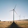 FLM Renewable 34