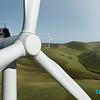FLM Renewable 21