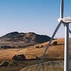 FLM Renewable 40