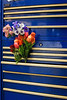 TOOLBOX FLOWERS 1235_edited-1_filtered