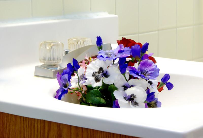 SINK FLOWERS 028_filtered