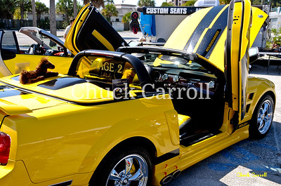 Powerfest at the Pass   - Preachers Cycle Promotions  -  Gater's Treasure Island, FL. - Saturday February 26, 2011
