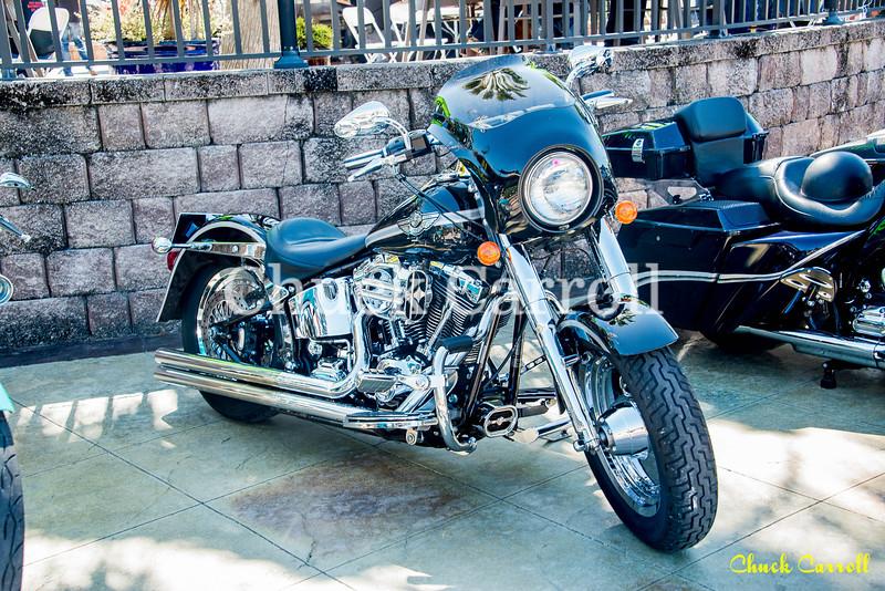 Winter Bike - 2/26/ 2017 – Chuck Carroll