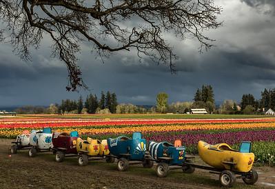 ---SPRING ARRIVES TOMORROW---  Looking forward to these kinds of sights. Hop on and let's enjoy the ride!  #portlandnw #portland #pdx #portlandnw portlandia #travelportland #ripcity #pdx #pnwlife #pnwcollective #northwestisbest #pnwonderland #oregonexplored #traveloregon #1859Oregon #pacificnorthwest #pnwonderland #bestoforegon #upperleftusa  #exploreoregon #exploregon #oregonnw #youroregon #thatpnwlife #backyardbend #jj_oregon #onlyinoregon #oregon_of_usa #woodenshoetulipfestival #tulips #tulipfestival