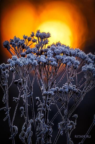 Лед и пламень - магия Любви / The Ice and Flame - The Magic of Love