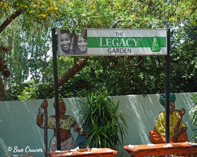 Soweto Township Legacy Garden