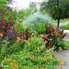Flourishing Flora