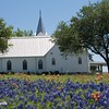 Whitehall Church and Bluebonnets