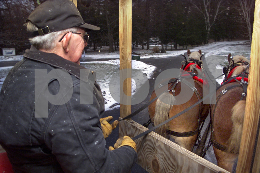 Mack 1. Ken Mack, 64, of Middlesex, drives a wagon with two Belgian Draft horses at Sonnenberg Gardens.<br /> 1/1/03 50 Plus NOT USED
