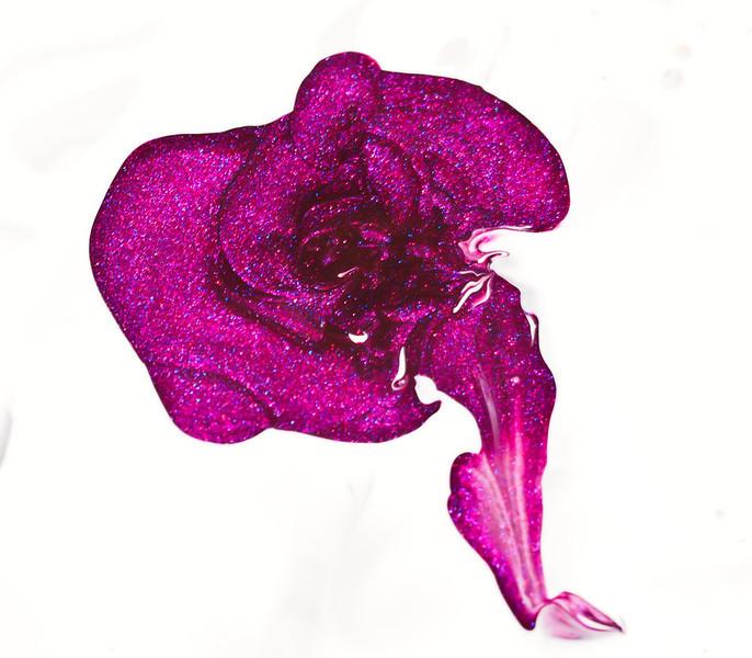 Pink Polish Rose