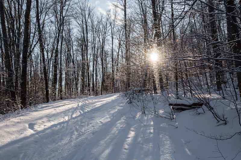WinterPostcard-12