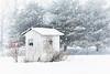 "CHRISTINNA KIRK KNAUSS - ""THERE'S NO BUSINES LIKE SNOW BUSINESS"" - LANDSCAPE"