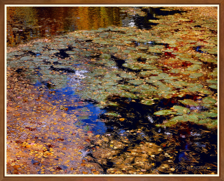 Monet's Favorite
