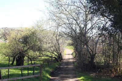 FOMFOK - Joseph D. Grant County Park