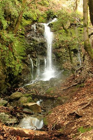 FOMFOK - Uvas Canyon