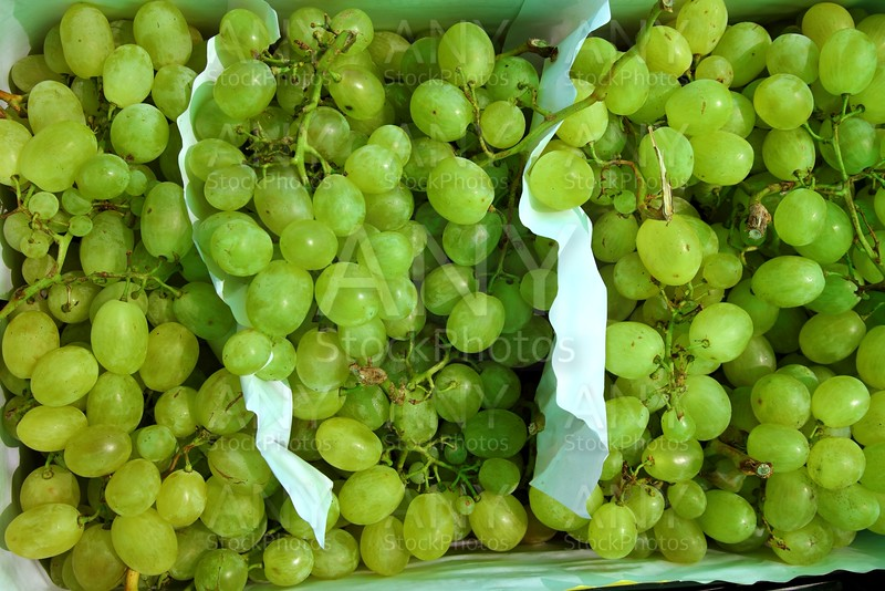 moscatel grape fruit clusters in market